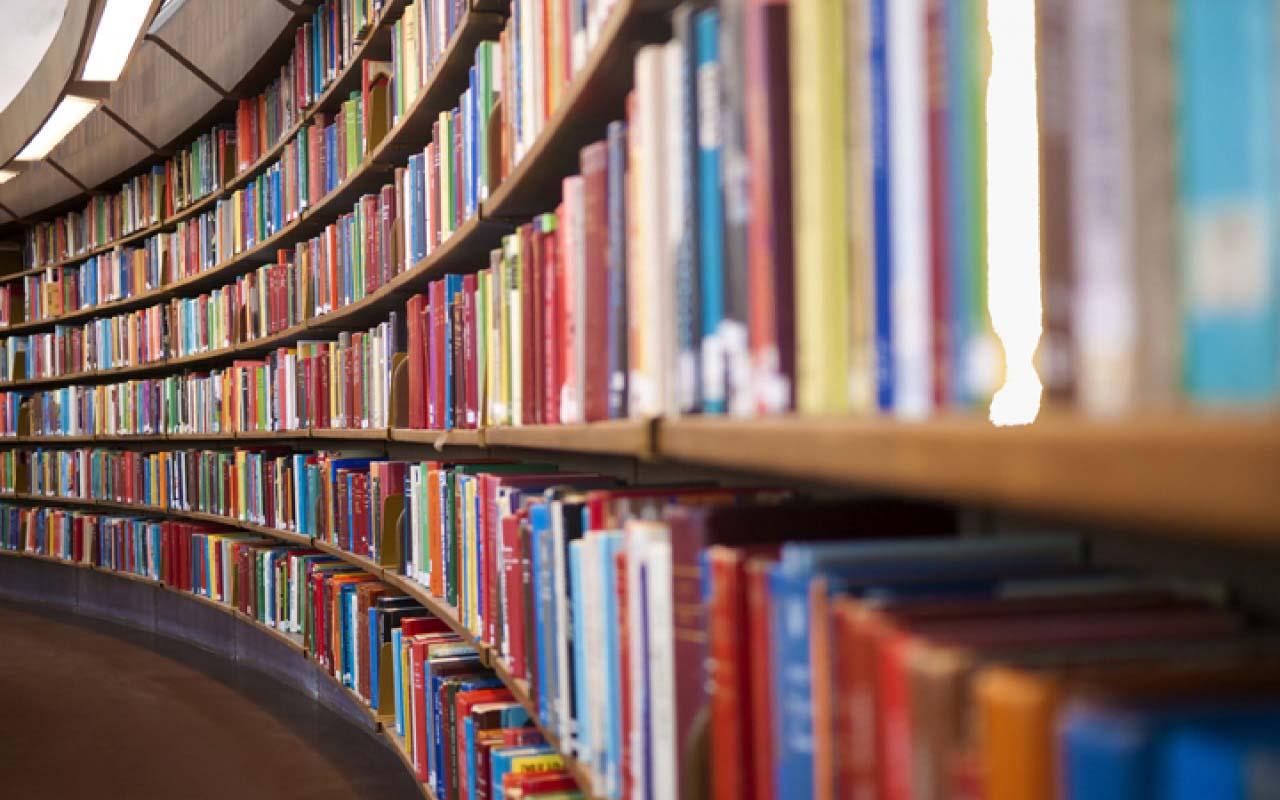 thesis statements childrens literature